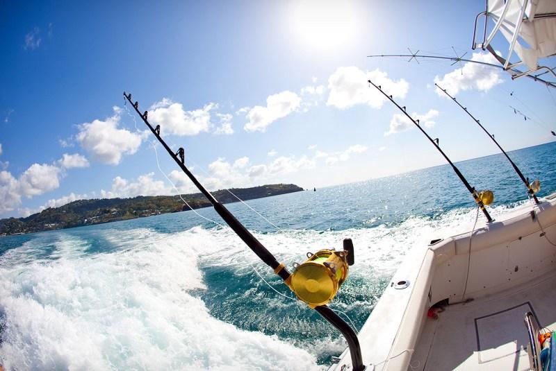 Sailo Fishing Hacks Reel Ties