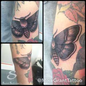 moth tattoo by Mike Grant