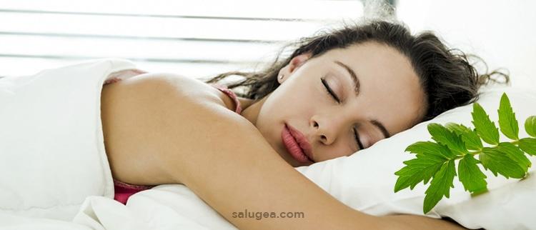 Valeriana sonno