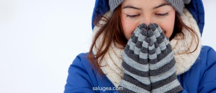 sambuco malanni invernali