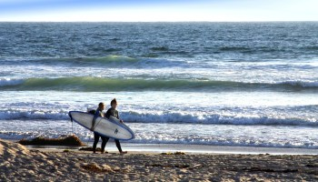 The Surfer's Tour of San Diego