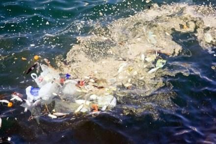 marine_pollution