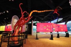 The Brain Exhibition