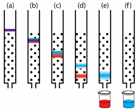 The interactions that each ingredient has with the column chemicals and moving solvent allow them to separate from each other, as seen in this figure