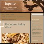 Ibycter blog