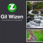 Gil Wizen Blog
