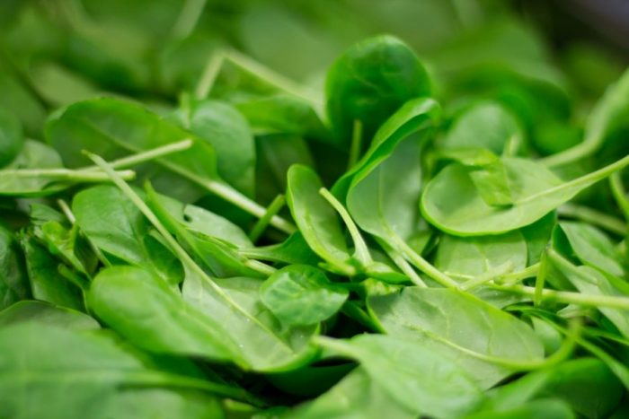 spinach-pixabay-CC0-ThiloBecker
