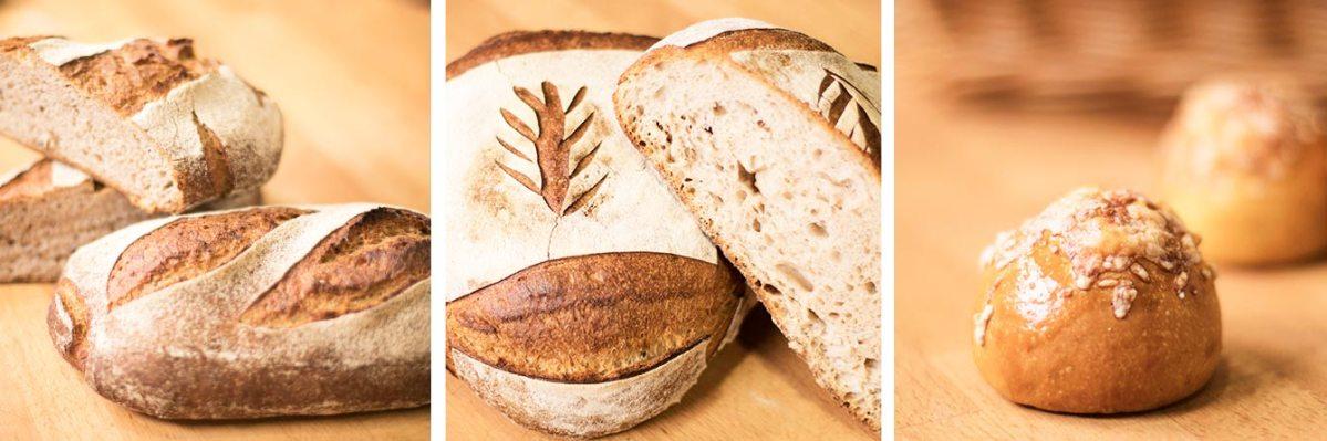 La fermentación en panadería: Qué es y cómo usar fermentos naturales
