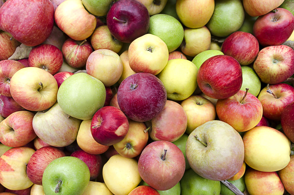 Mil y una formas de cocinar una manzana