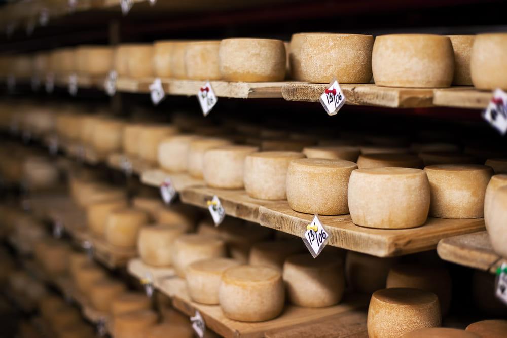 Elaboración del queso: 4 pasos básicos