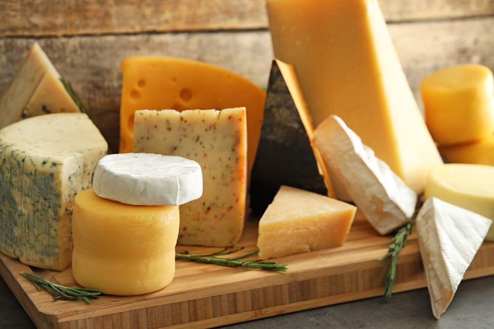 ¿Cuáles son los principales tipos de quesos?