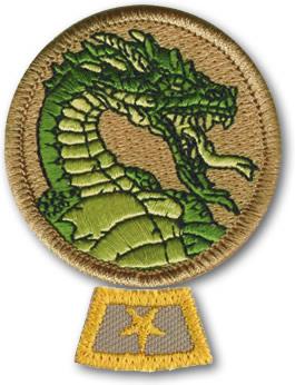 dragon-patrol-honor