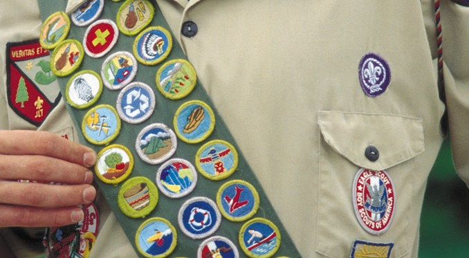 Image result for merit badge sash