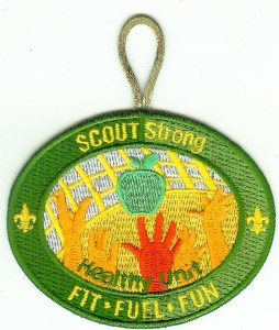 SCOUTStrong Healthy Unit