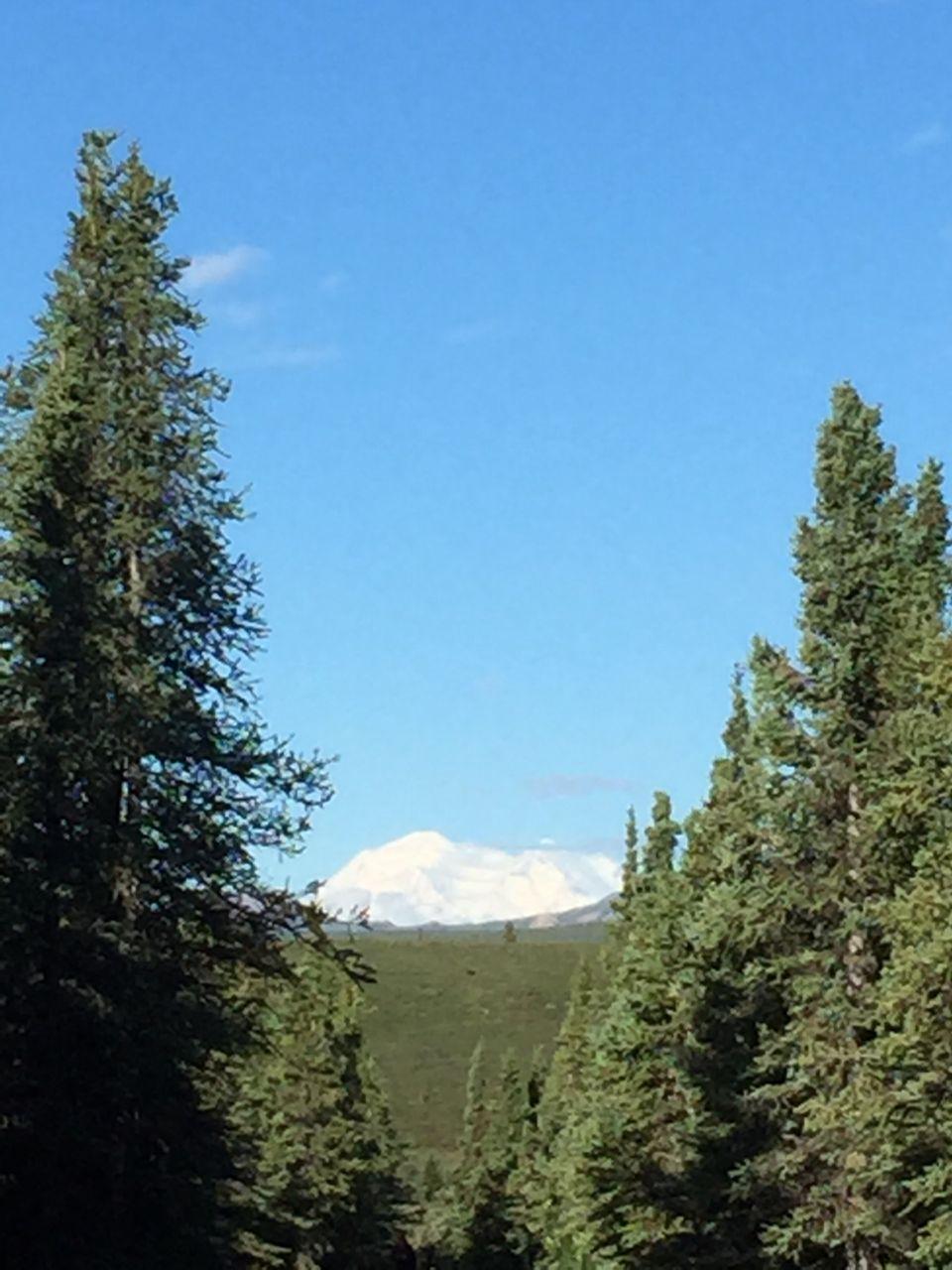Day 10 Mt. McKinley revealed_s