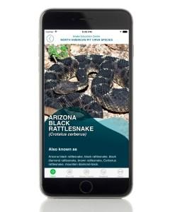 SnakeBite911 app