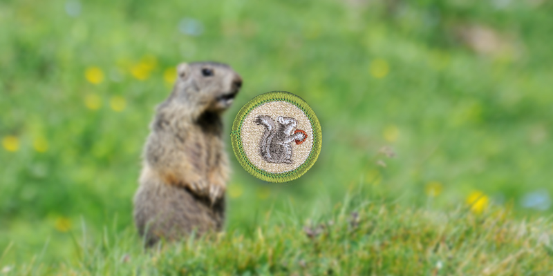 What's your verdict, Phil? Groundhog makes his prediction