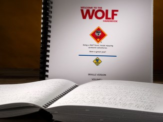 The cover of the two-volume Braille edition of the Wolf Handbook.