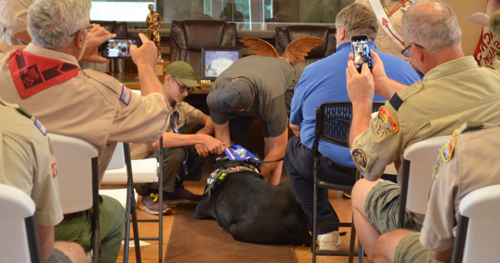 Very good support dog recognized at Eagle court of honor for Scout with Asperger's