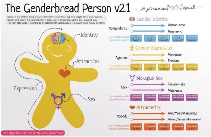 有些學校使用薑餅人的圖解釋多元性別
