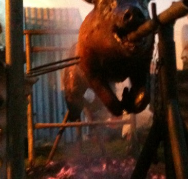 Pig on a Spit Anyone?
