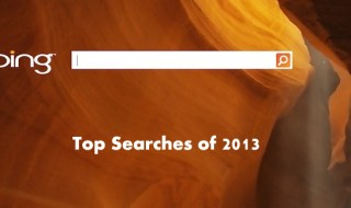 Top Searches of 2013