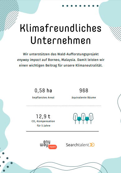 Searchtalent is green: Urkunde