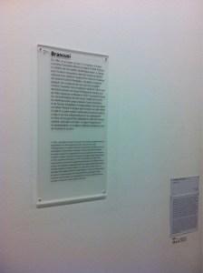 Texte de salle, Constantin Brancusi
