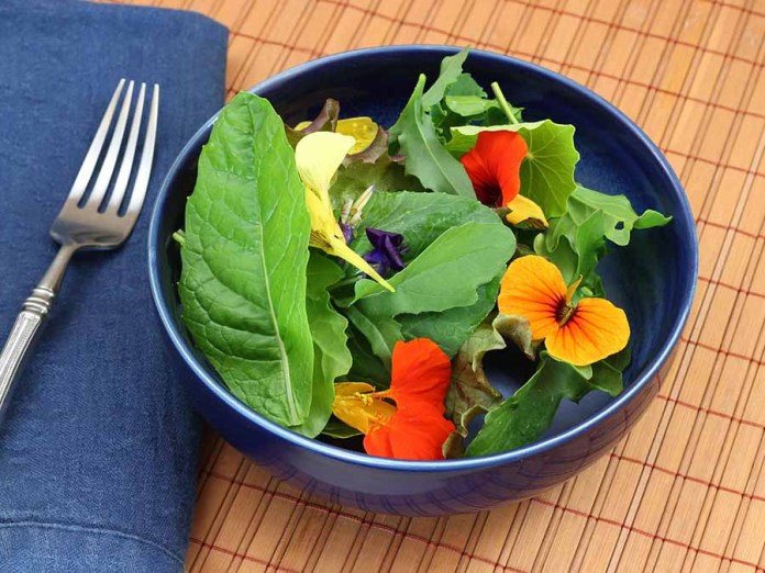 5 recipes with insects and flowers for cooking during Lent