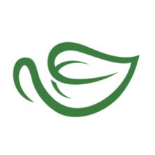 Yum Matcha- Seelect Tea's Sister Company