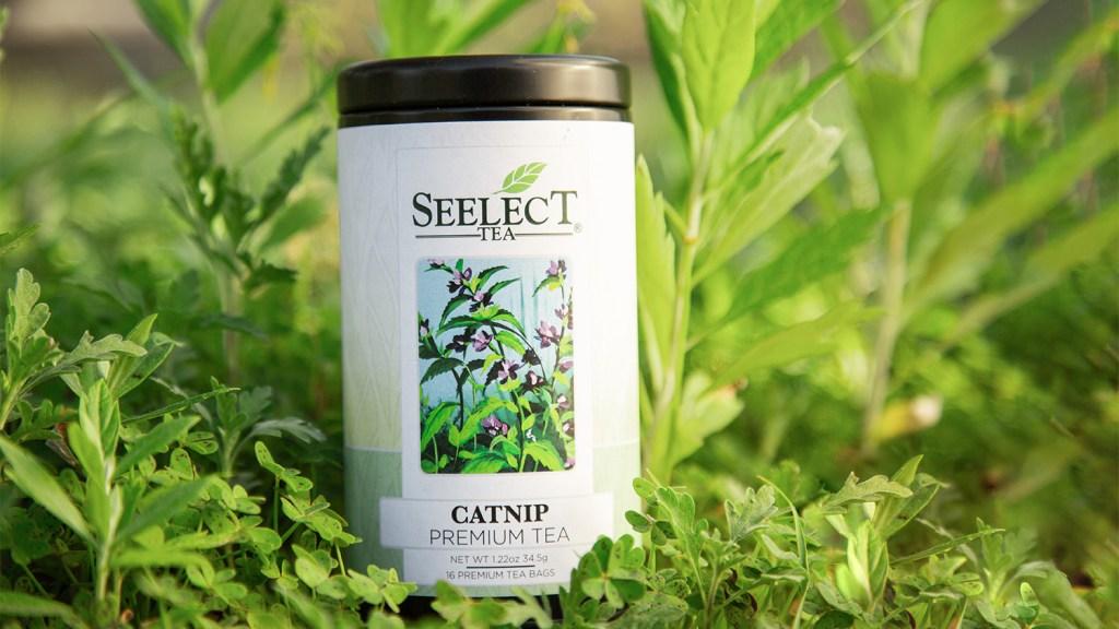 Seelect Tea's catnip tea.