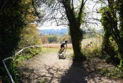 SellwoodCycle_GPCM_LF27