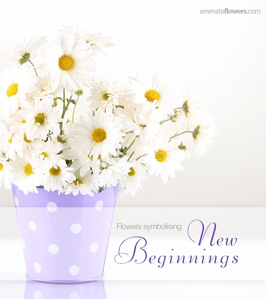 Flowers Symbolising New Beginnings