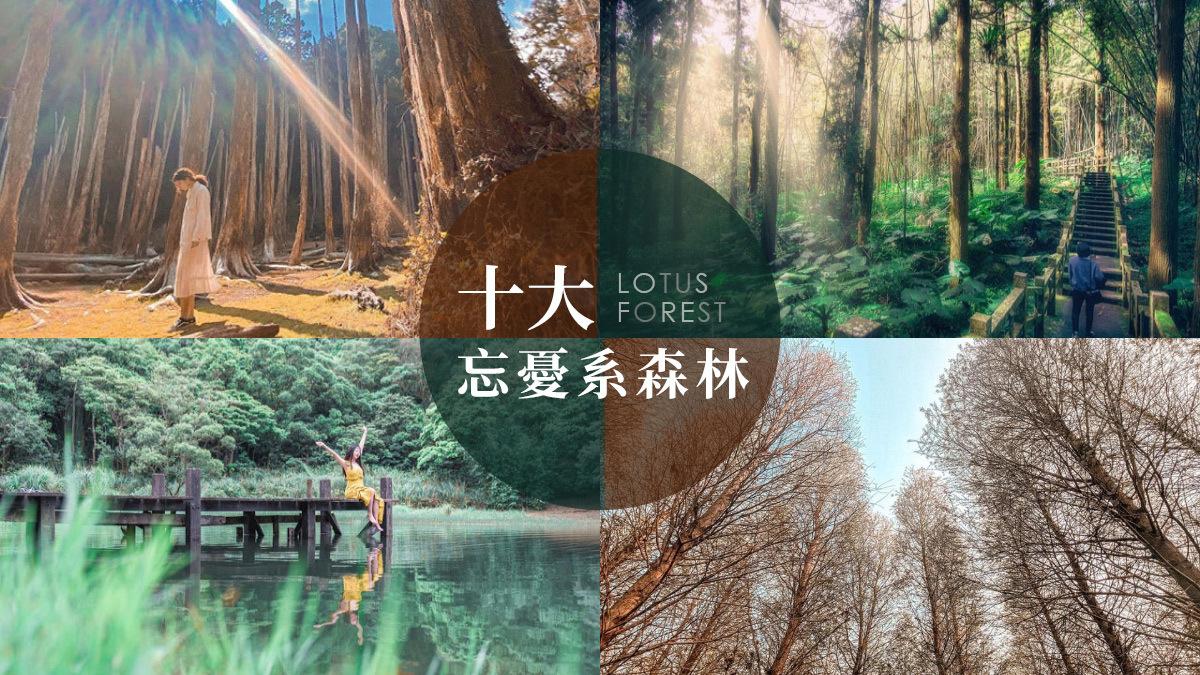 十大忘憂系森林|東南旅遊