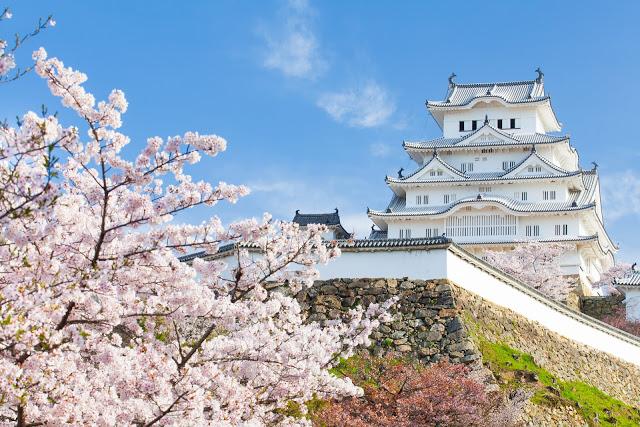 日本賞花|東南旅遊