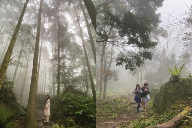 馬武督探索森林|東南旅遊