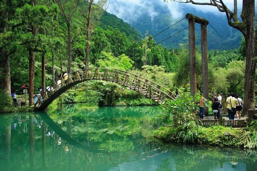 位於海拔約1600公尺,屬於溫帶季風的天氣,夏季平均氣溫為20度,終年可見雲霧繚繞,是避暑度假的理想選擇。杉林溪的中藥植物園是台灣出名的特殊植物天堂|東南旅遊