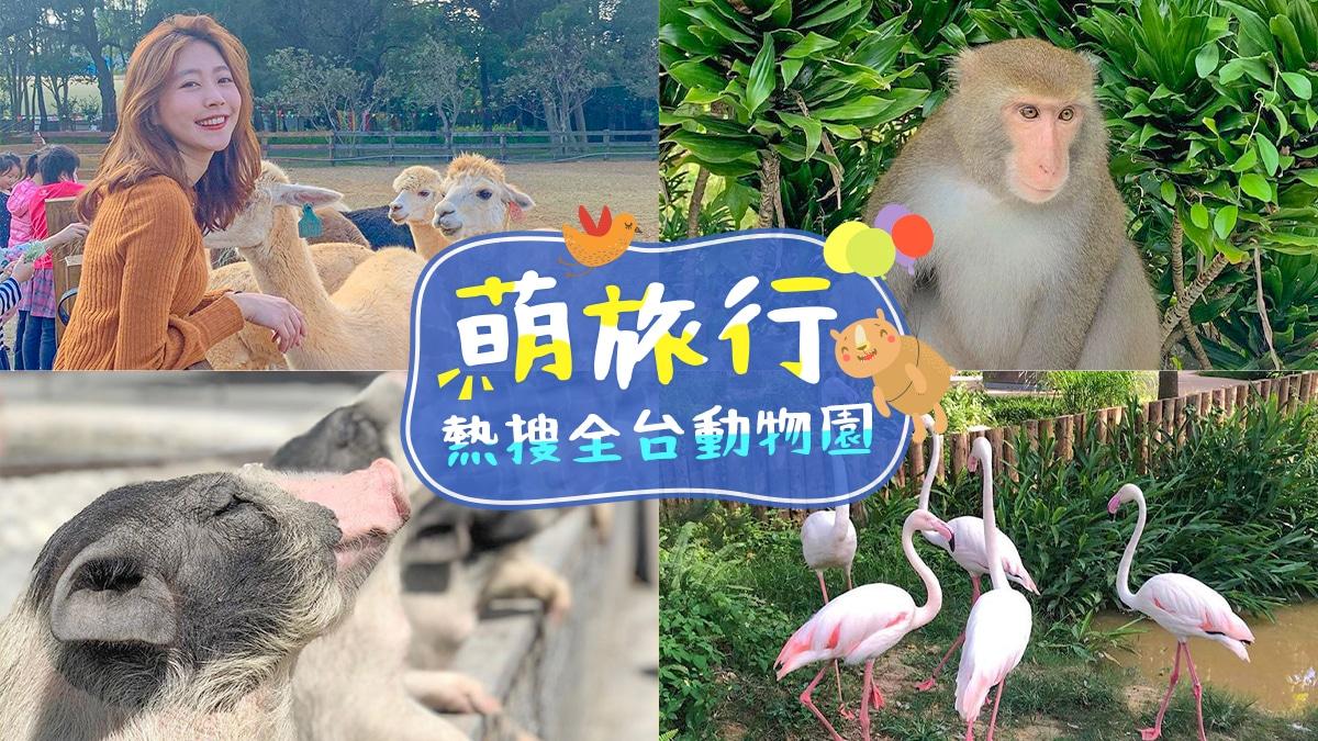 全台動物園|東南旅遊