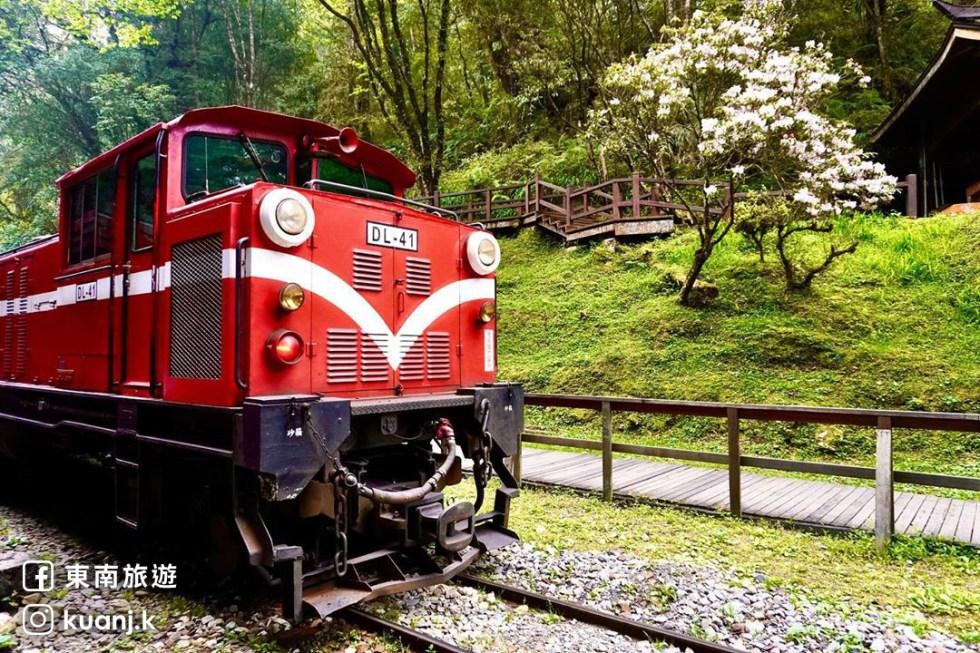 阿里山小火車|東南旅遊