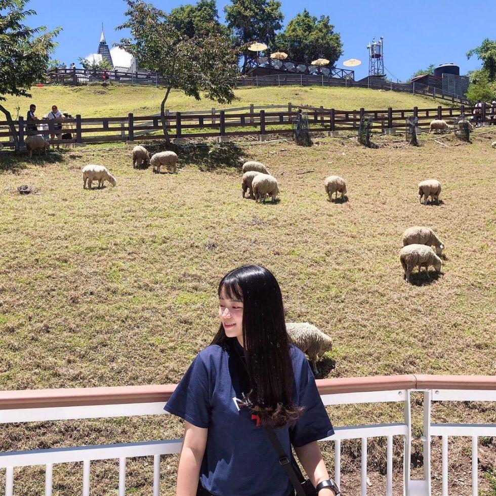 清境農場|東南旅遊