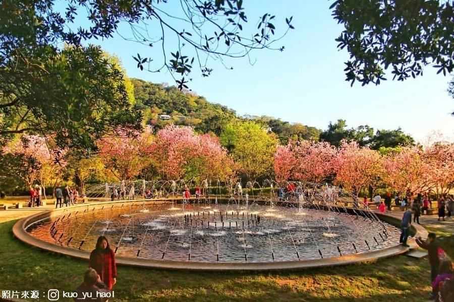 烏來溫泉櫻花季| 東南旅遊