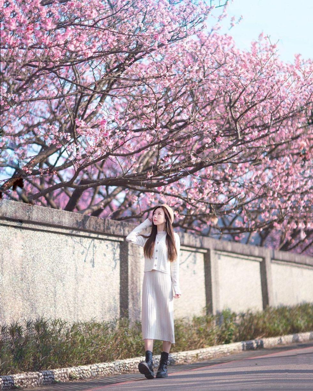 陽明山平菁街|東南旅遊