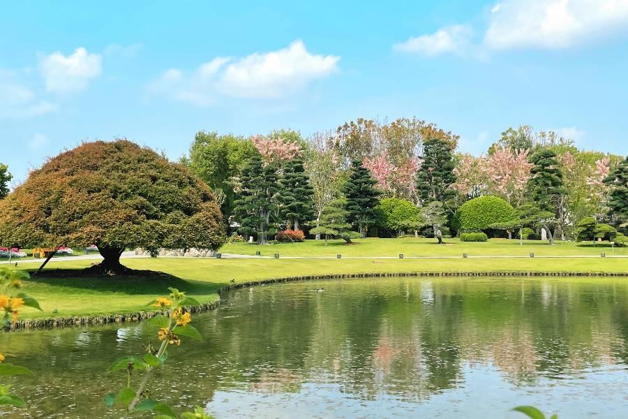 成美文化園 | 東南旅遊