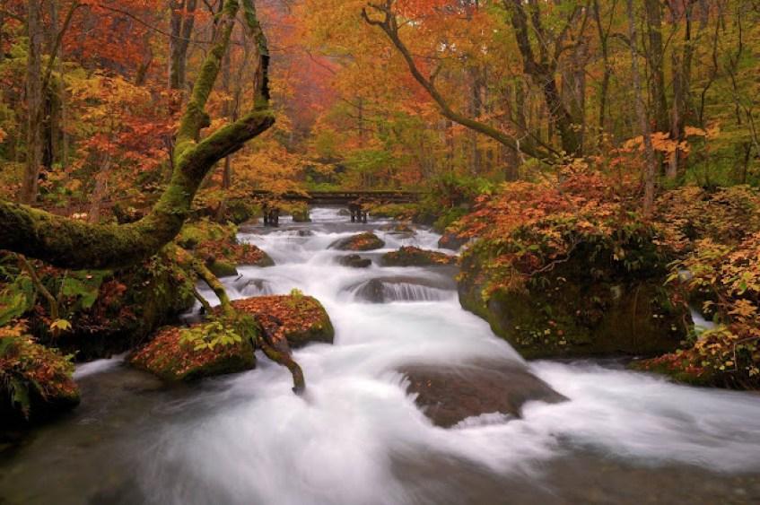 奧入瀨溪|東南旅遊