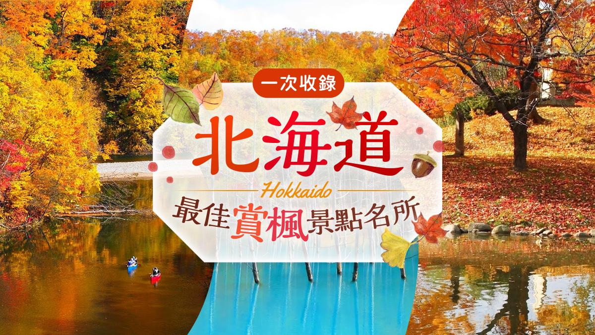 北海道賞楓BN|東南旅遊