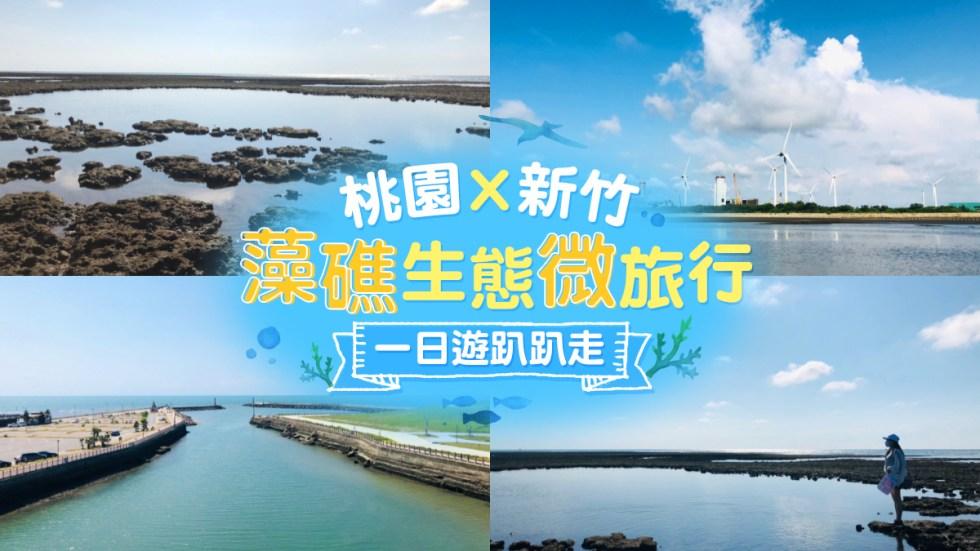 藻礁生態微旅行 東南旅遊