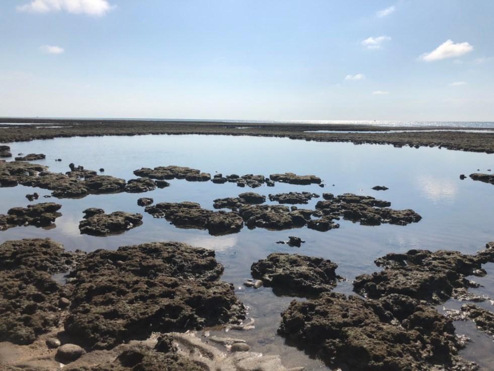4-1觀新藻礁 東南旅遊