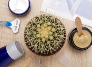 Epilation naturelle cire rasoir disque et soins bio
