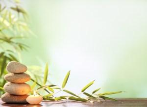 Rentrée zen au salon zen paris