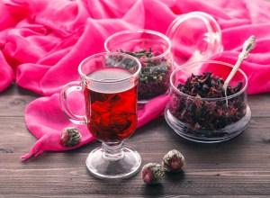 boisson hibiscus bio